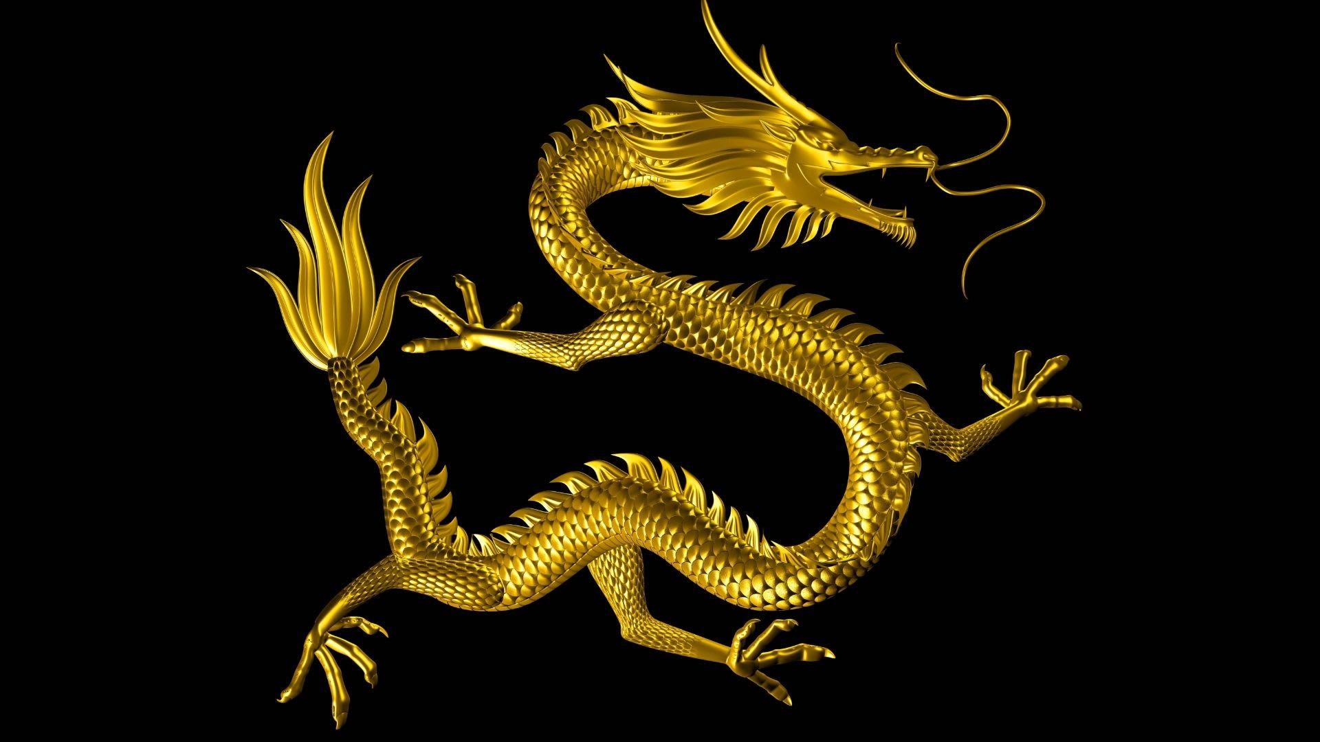 Live Dragon Tiger Kasiinode tehnoloogia